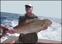 Klicken Sie auf die Grafik für eine größere Ansicht  Name:Fisch01.jpg Hits:18 Größe:48,3 KB ID:9319
