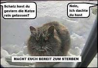 Klicken Sie auf die Grafik für eine größere Ansicht  Name:Katze Winter.jpg Hits:34 Größe:47,5 KB ID:11537