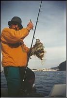 Klicken Sie auf die Grafik für eine größere Ansicht  Name:Fischfang-07.jpg Hits:26 Größe:25,4 KB ID:9515